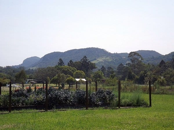 Tallebudgera Mountain from Currumbin Ecovillage at Currumbin Waters, Queensland